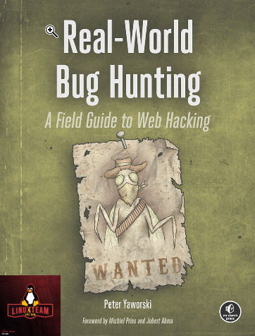 real world bug hunting